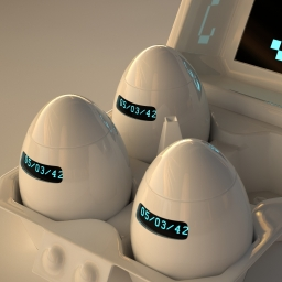 Eggs from the future